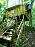 Chtaniere Lodge treehouse accommodation