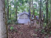 camping in dominica