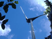 forest hotel accommodation wind turbine in rosalie jungle dominica